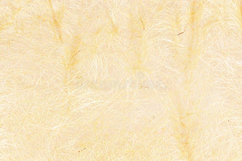 Wood textur för ingrepp för bacground royaltyfri bild