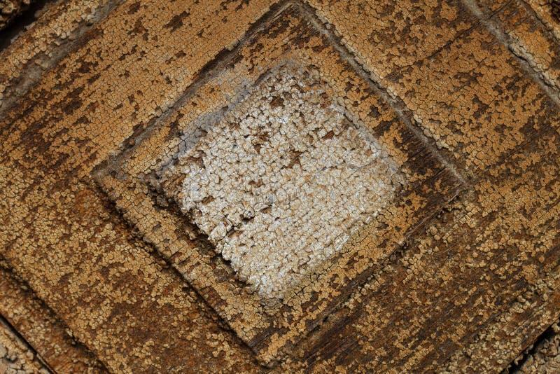 Wood textur för tappning, abstrakt bakgrund, grunge royaltyfria foton