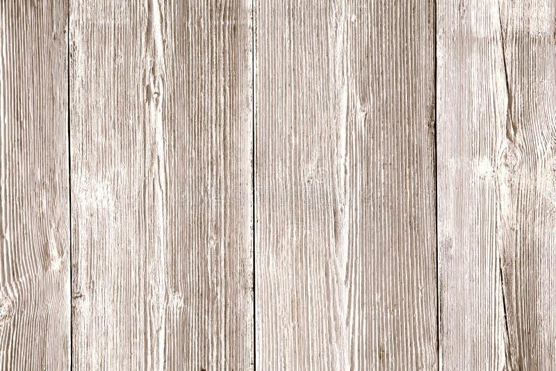 Wood textur, ljus trätexturerad bakgrund, kornplankor arkivbild