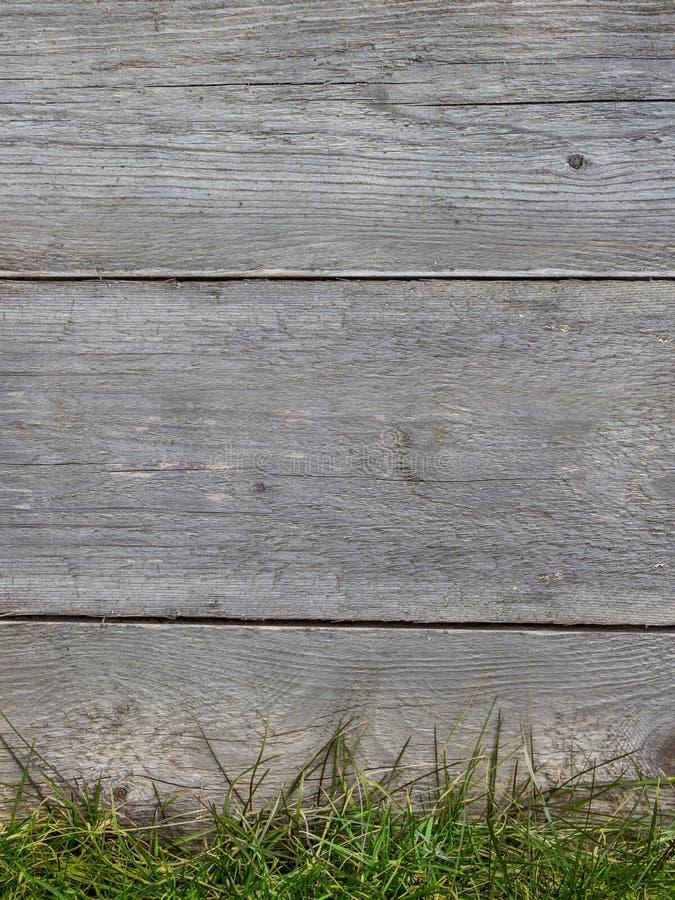 Wood texturbakgrund, trävägg med grönt gräs Tappning Grey Timber Plank Wall Close upp arkivbild