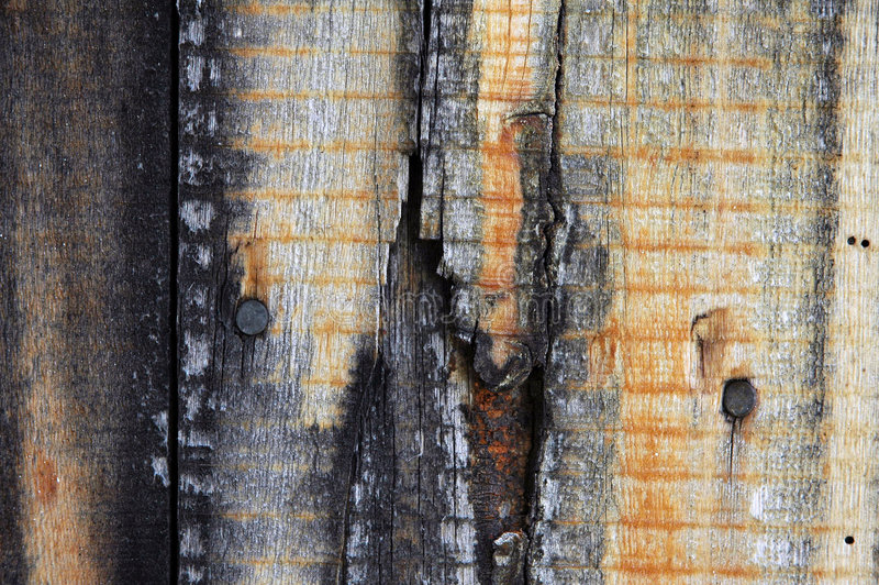 Download Wood texture stock image. Image of nature, mold, dirty, molding - 8361
