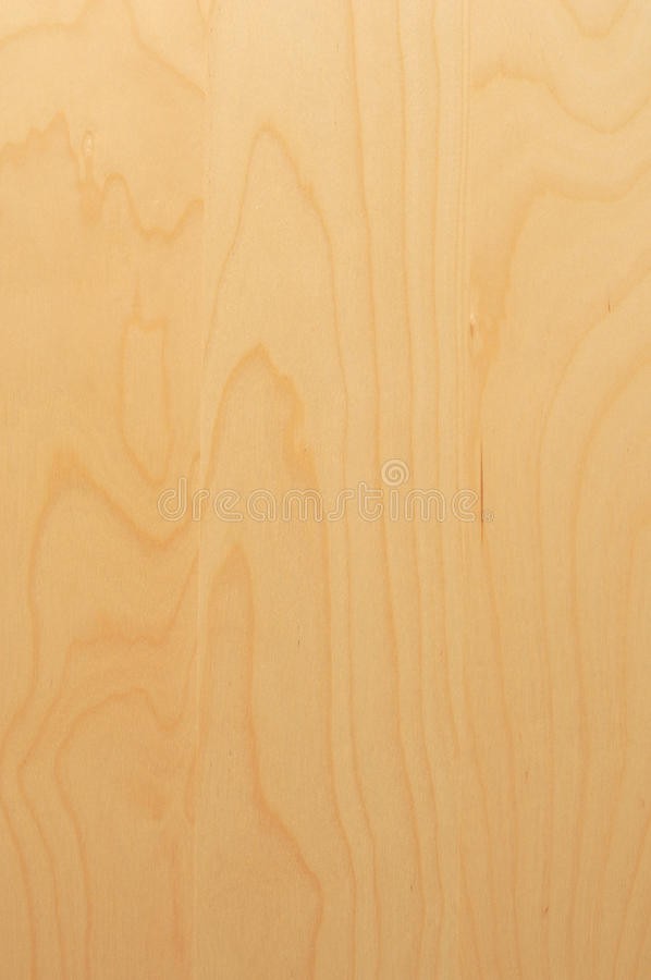 Wood - texture. Wooden texture - bright young wood