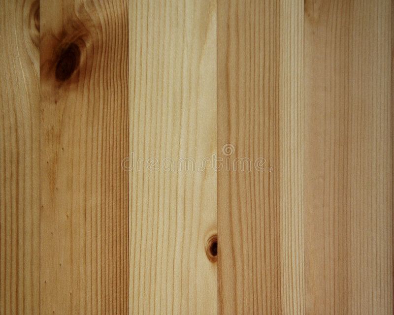 Wood Texture. A detail of wood texture
