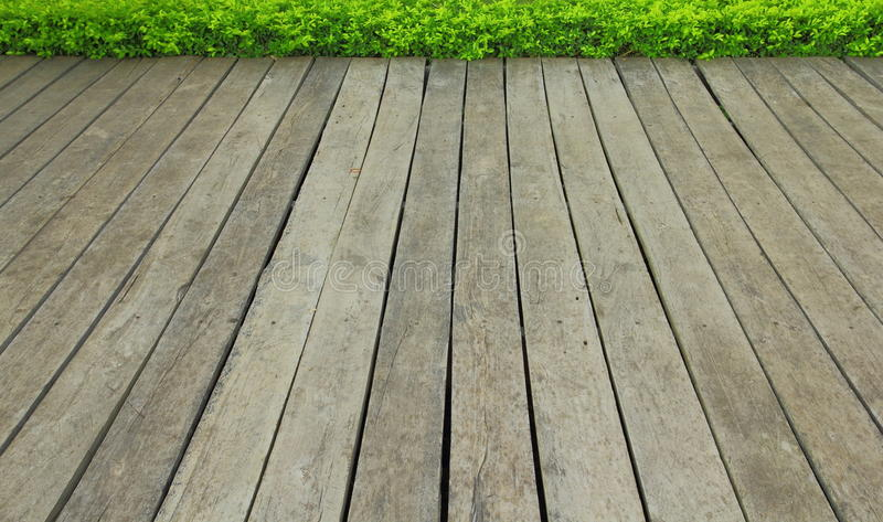Download Wood texture stock image. Image of background, texture - 17288383
