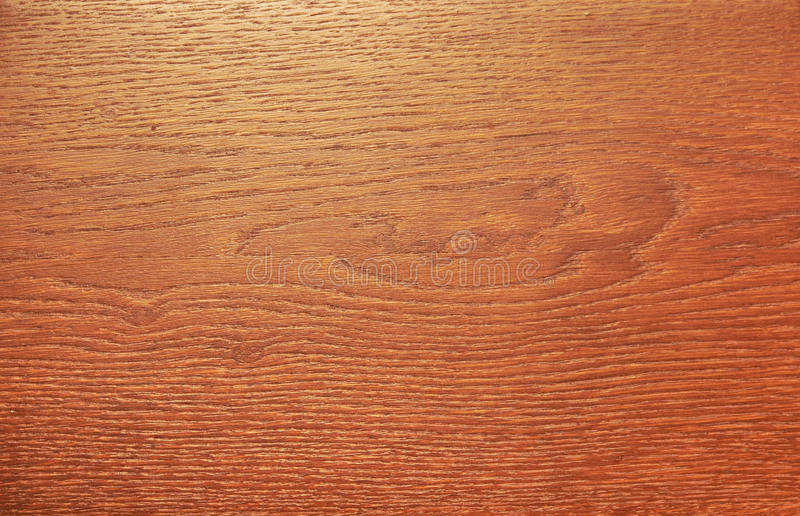 Download Wood texture stock photo. Image of hardwood, natural - 18569400
