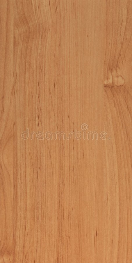 Wood texture. Alder with straight lines royalty free stock photo