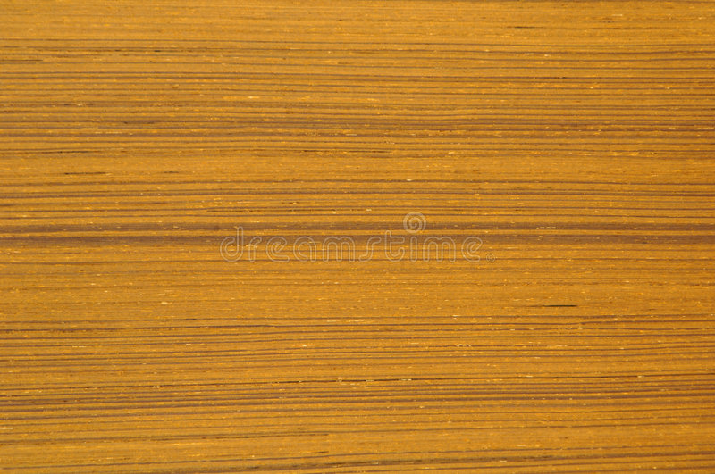 Wood texture. Best choice for designers.-old wood texture royalty free stock photography