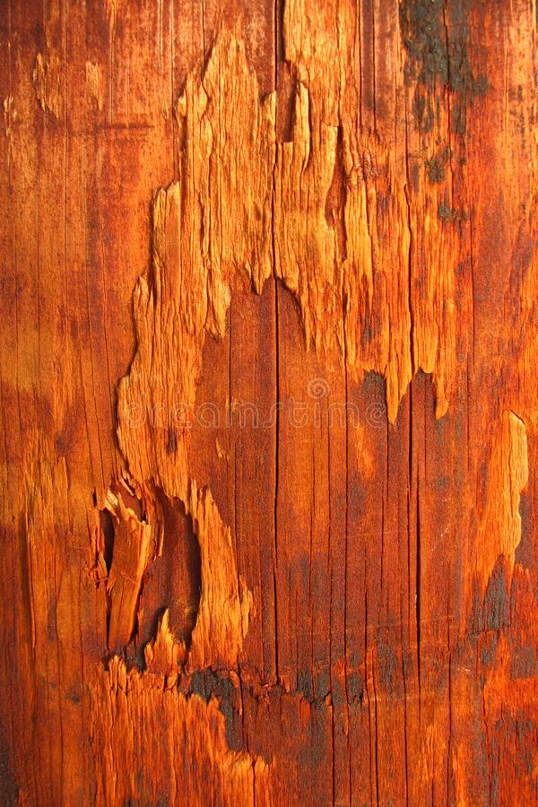 Wood Texture 2 Free Public Domain Cc0 Image
