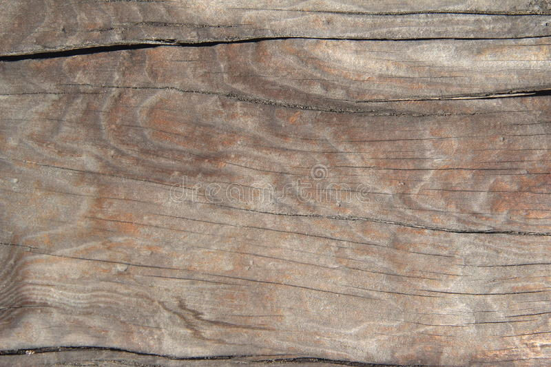 Wood Texture. stock images