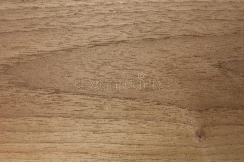 Wood Texture American Walnut Stock Image Image Of Detail
