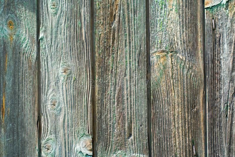Wood Texture Background stock image