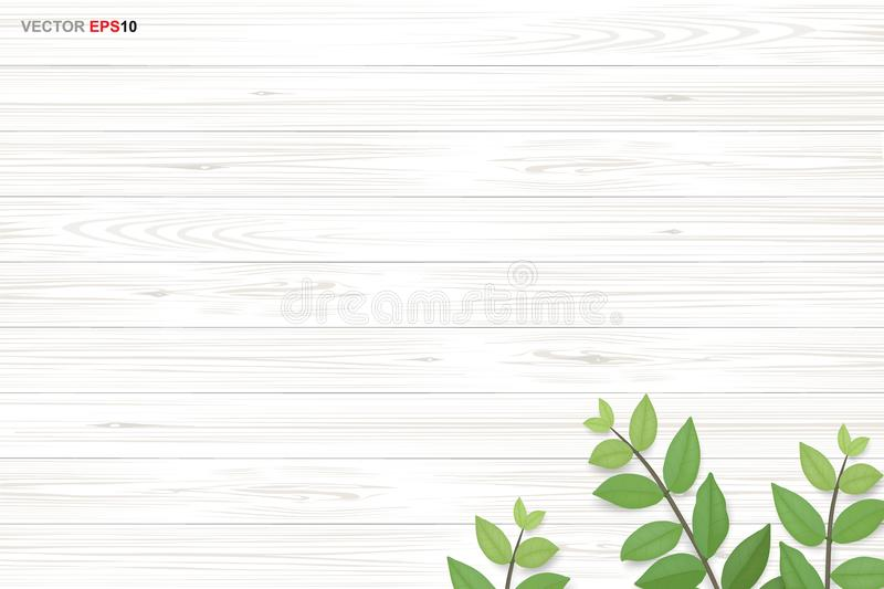 Wood texture background with green leaves. Vector illustration. Wood texture background with green leaves. Realistic vector illustration vector illustration