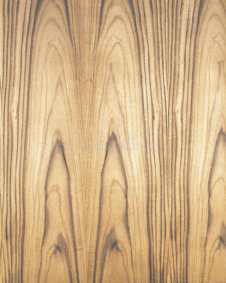 Wood texture background_teak_11. Texture background wood. High resolution background. Please see all kind wood type in my series stock photography