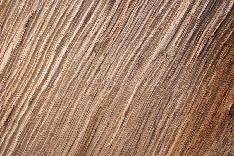 Wood texture. A brown, wood texture stock photography