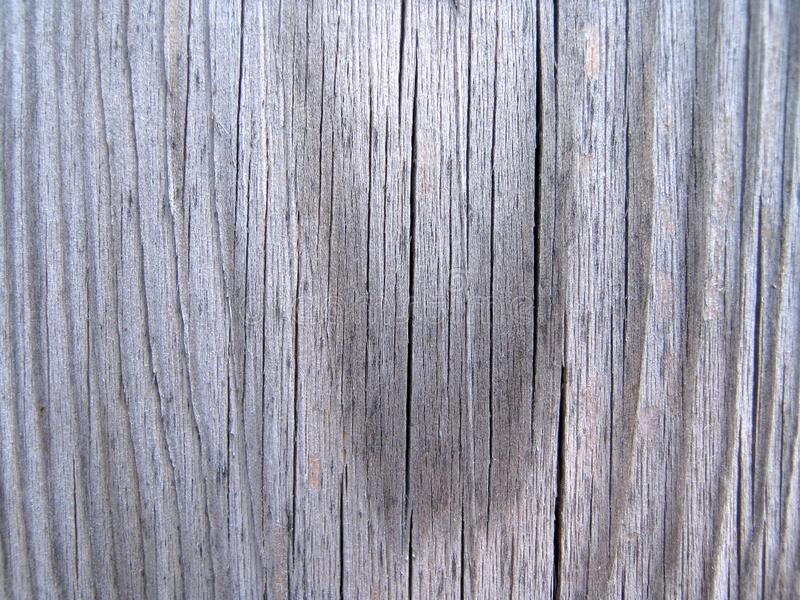 Wood texture. A close-up of a grey wooden plank stock images