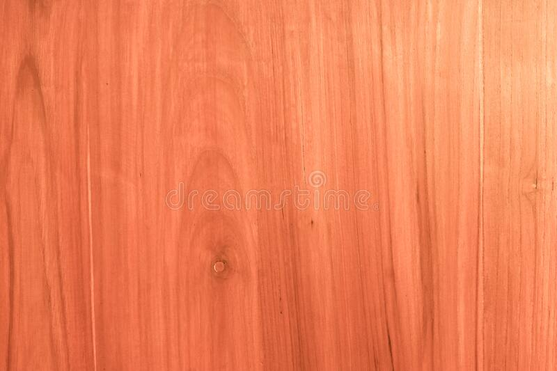 Wood texture for design and decoration stock images