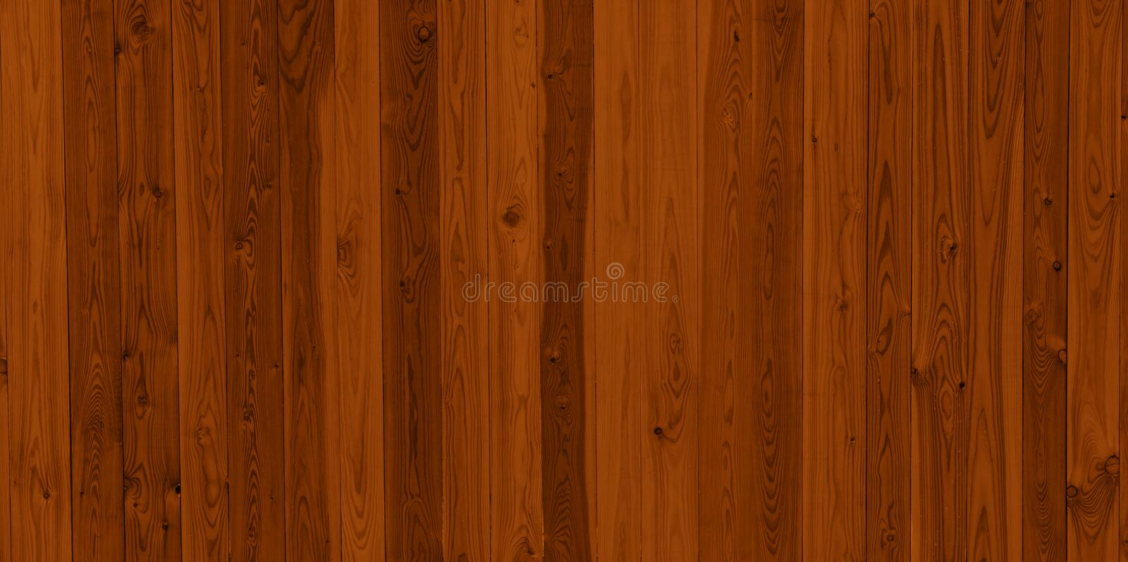 Wood texture. In detailed zoom royalty free stock photos