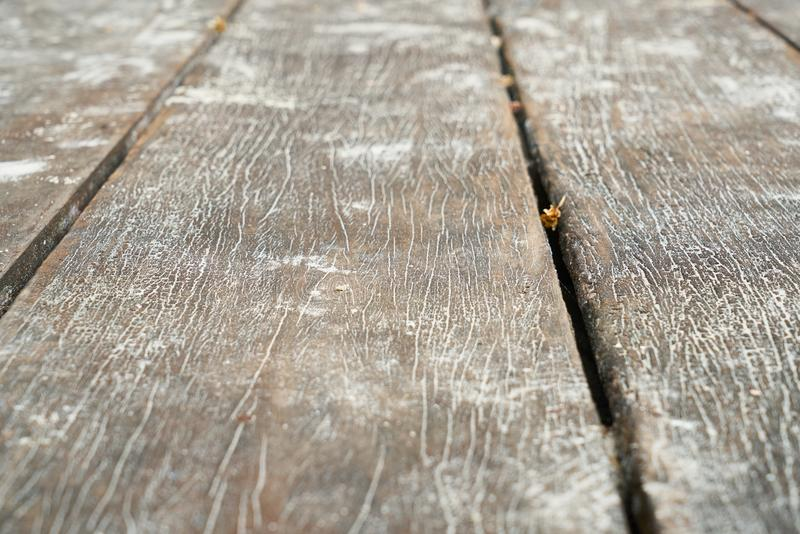 Wood, Texture, Floor, Wood Stain stock photography