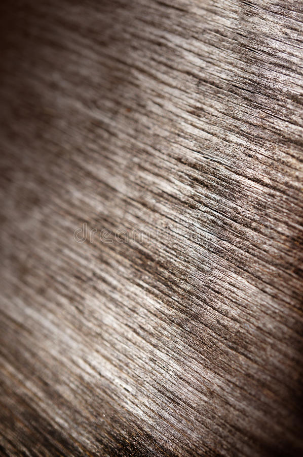 Wood texture, macro background royalty free stock images