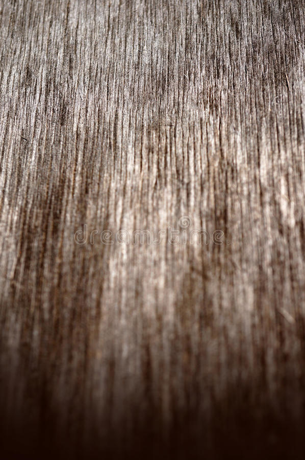 Wood texture, macro background stock photography