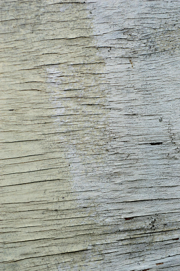 Wood texture with natural wood pattern stock photo