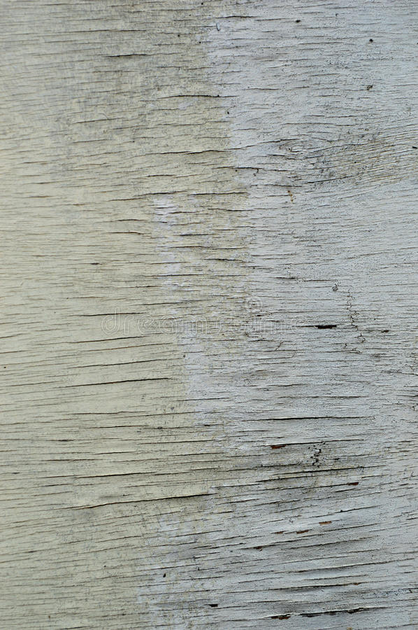 Wood texture with natural wood pattern stock images