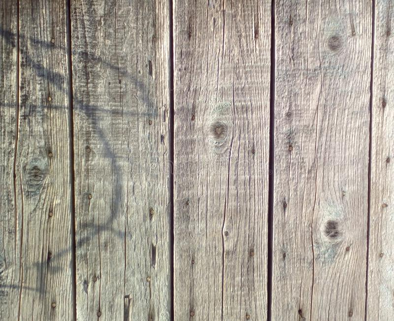 Wood texture old. Fragment of a wooden doors backgraund royalty free stock photo