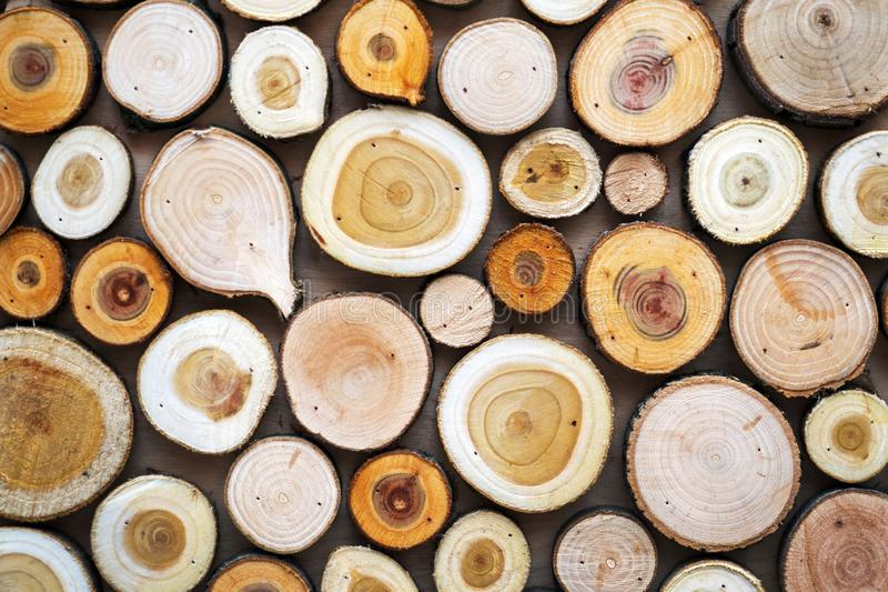 Wood texture. Pieces of sawn logs. Natural background stock photo