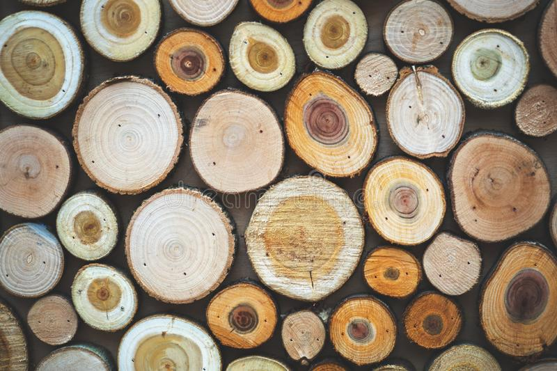 Wood texture. Pieces of sawn logs. Natural background.  stock photos