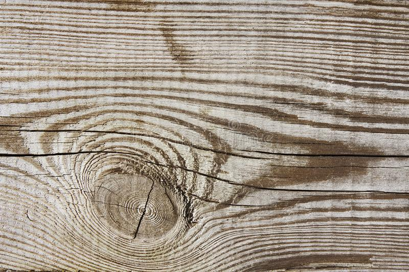Wood texture plank grain timber background, wooden desk knot royalty free stock photos