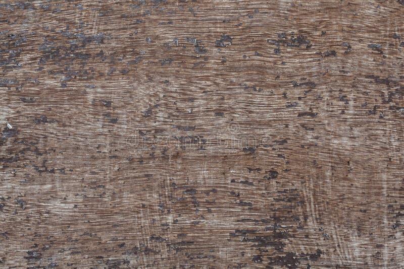 Wood texture macro royalty free stock image