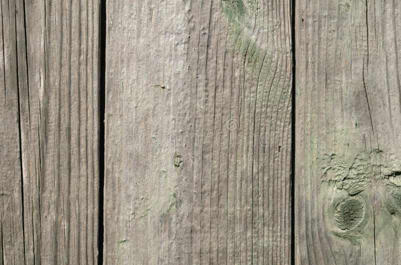 Wood texture, vertical lines. Green paint royalty free stock photos