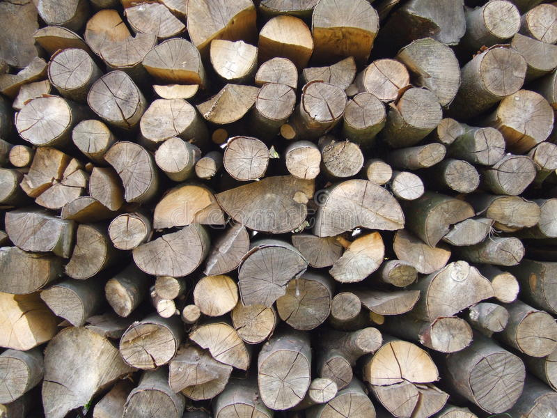 Wood texture W stock images