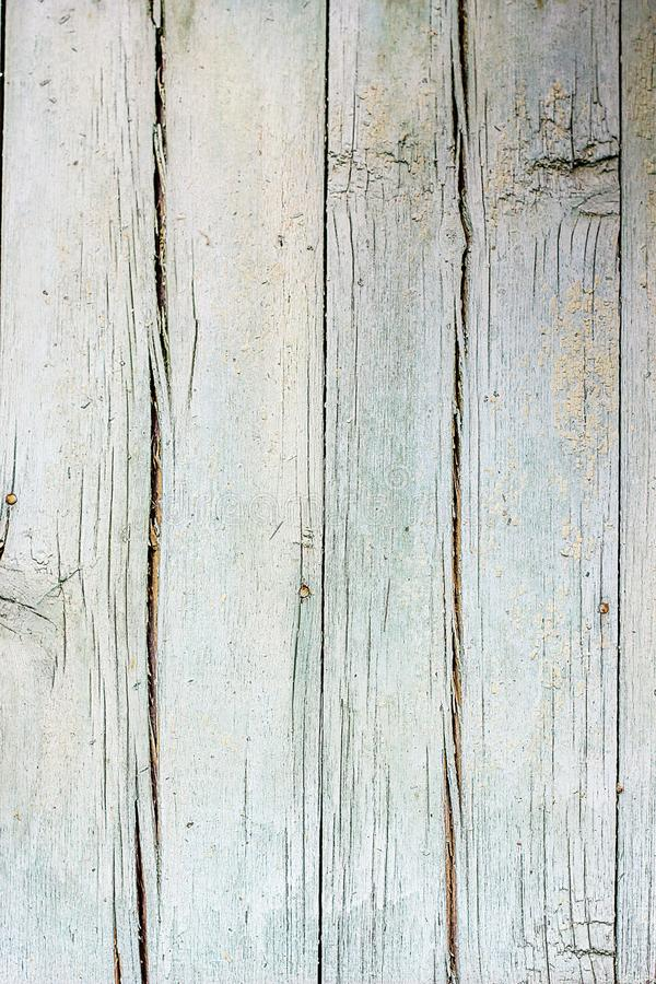 Wood texture wall board Background old cracked panels. Abstract texture of tree stump, crack wood ancient. Selective focus vintage stock photo