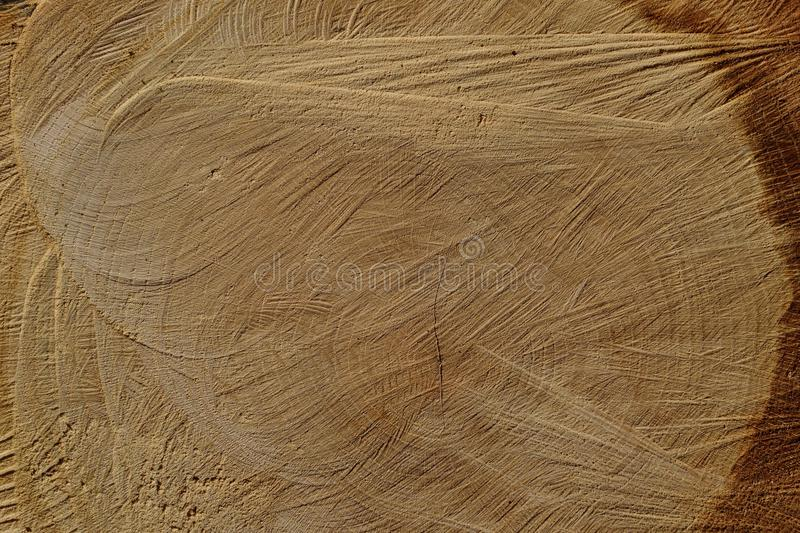Wood, Texture, Wood Stain, Grass Family royalty free stock images