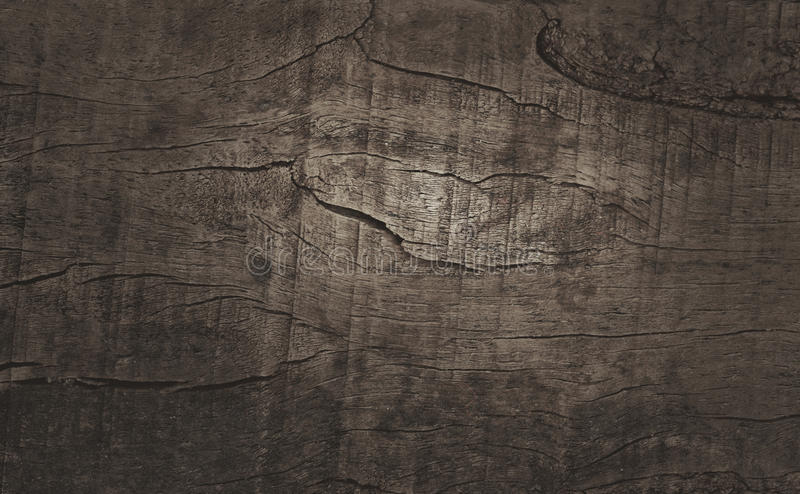 Wood texture/wood texture background stock images