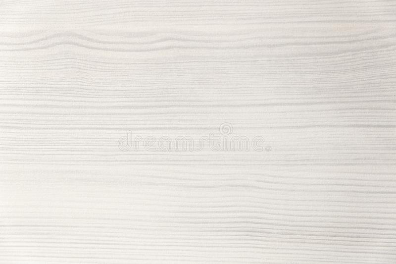 Wood texture. Wood texture for design and decoration. Color white, milk. Fine texture, pattern. Bleached wood. White background royalty free stock photo