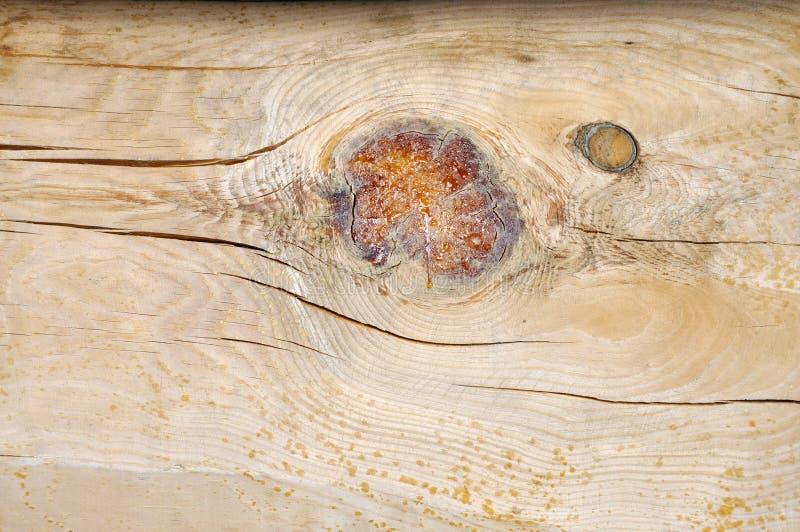 Wood texture. stock photo