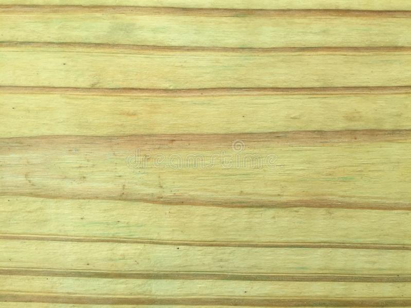 Wood texture. Wooden texture with straight lines stock images