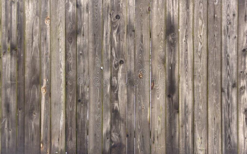 Wood texturtapet för klassisk natur för gammalt trä för bakgrund med linjen arkivbilder
