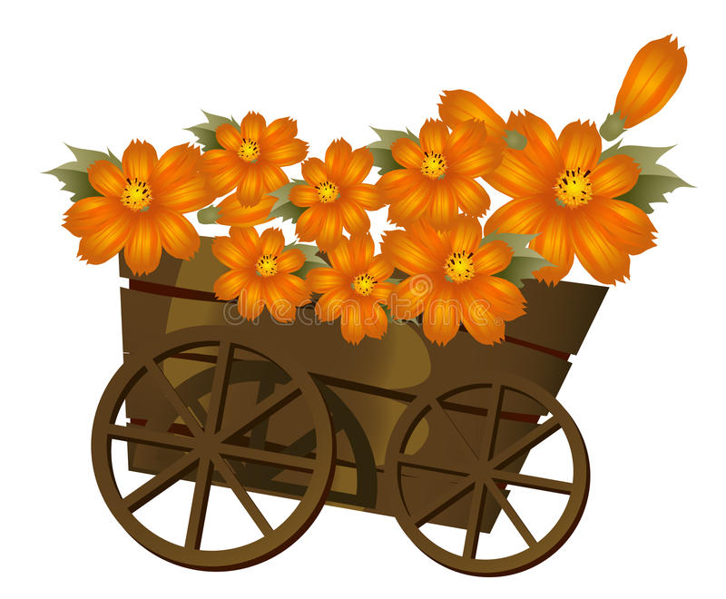 A wood trolley and flower. A group of orange flower in a wood trolley royalty free illustration