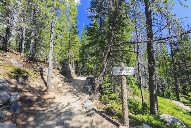 Wood underteckna in Rocky Mountain National Park royaltyfri foto