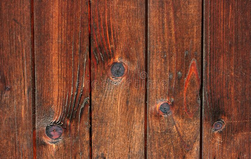 Wood wall. Natural pattern wood background stock image