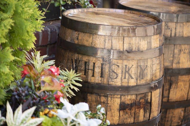 Wood Whisky Barrels outside stock image