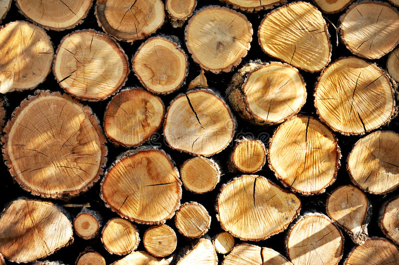 Download Wood For Winter stock photo. Image of closeup, logs, logging - 33696474