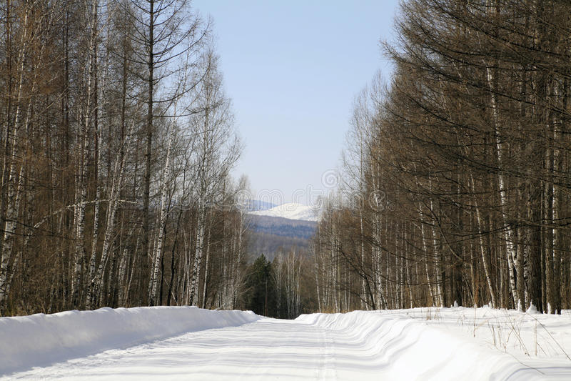 Wood Winter Road To Foothills Of Sayan Mountains Stock Image