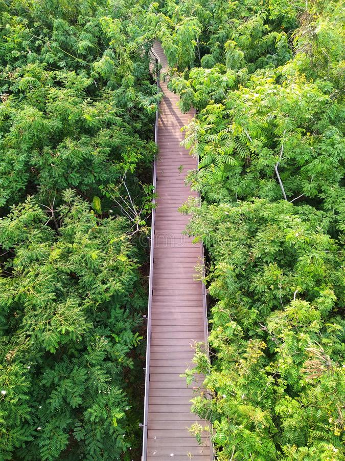 Woodbridge im Wald stockbilder