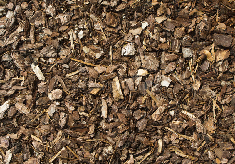 Woodchip. Natural texture background woodchips commonly used to provide protection around plants to stem weed growth royalty free stock photography
