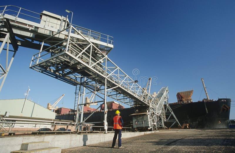 Woodchip som laddas på till skeppet för bärare i stora partier för export fotografering för bildbyråer