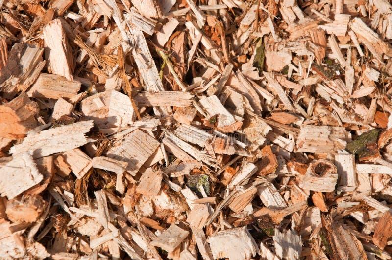 Woodchips das árvores foto de stock royalty free